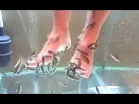 pikkelysömör orvosság citrom vörös vizes foltok a lábakon